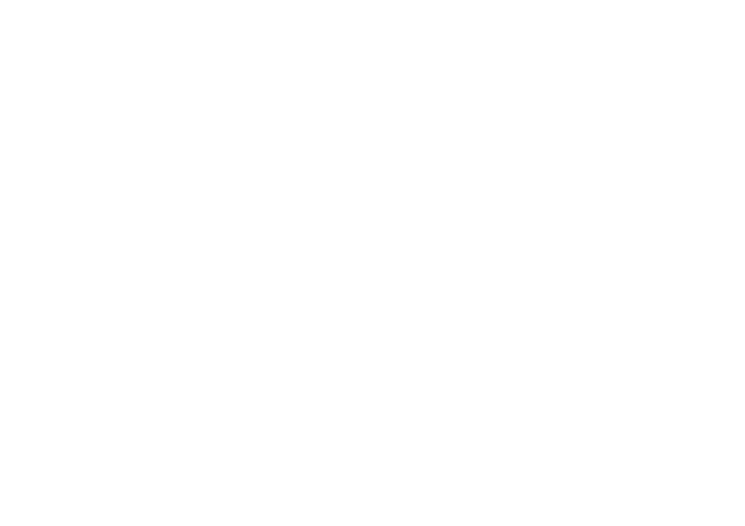 DISOPA